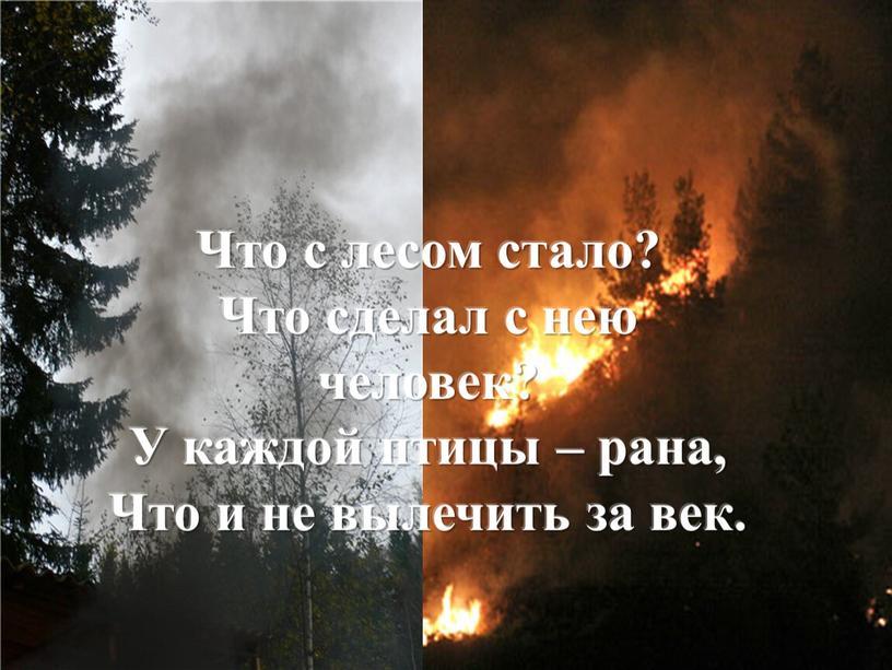 Что с лесом стало? Что сделал с нею человек?