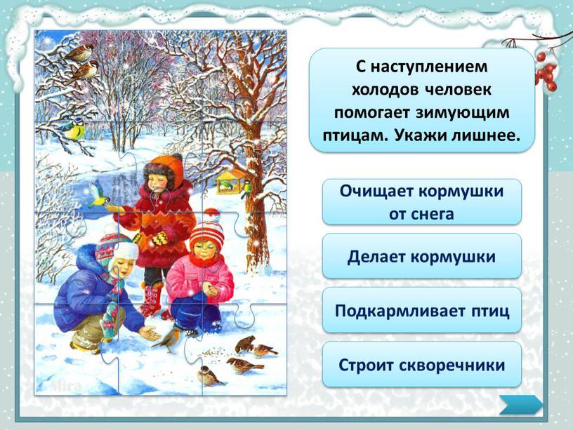 С наступлением холодов человек помогает зимующим птицам