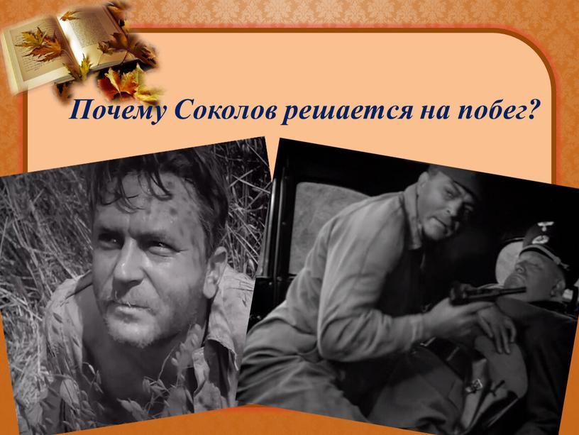Почему Соколов решается на побег?