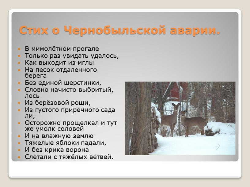 Стих о Чернобыльской аварии. В мимолётном прогале