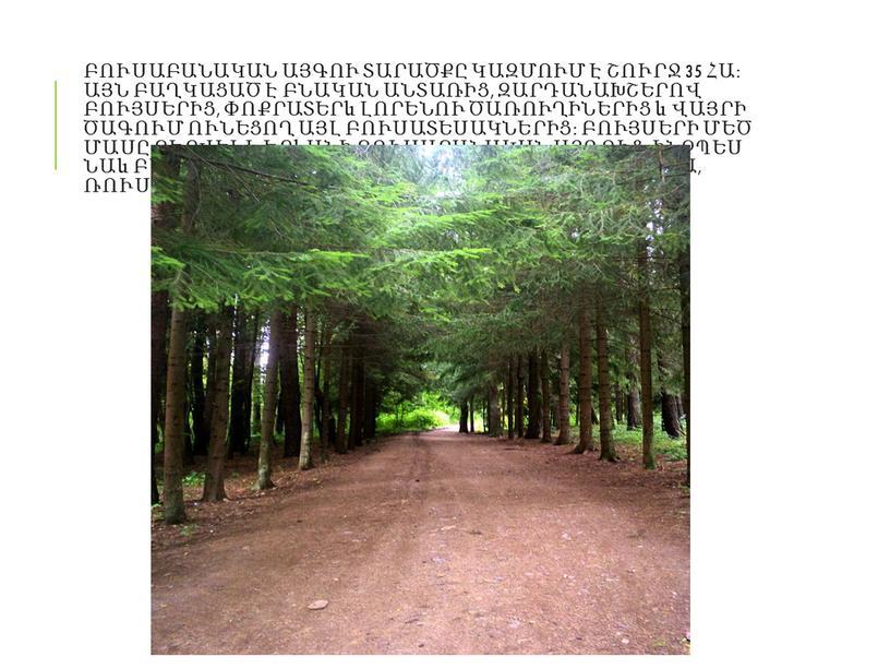 Բուսաբանական այգու տարածքը կազմում է շուրջ 35 հա։ Այն բաղկացած է բնական անտառից, զարդանախշերով բույսերից, փոքրատերև լորենու ծառուղիներից և վայրի ծագում ունեցող այլ բուսատեսակներից։ Բույսերի…