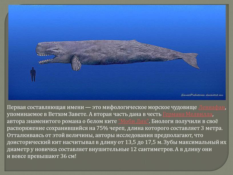 Первая составляющая имени — это мифологическое морское чудовище