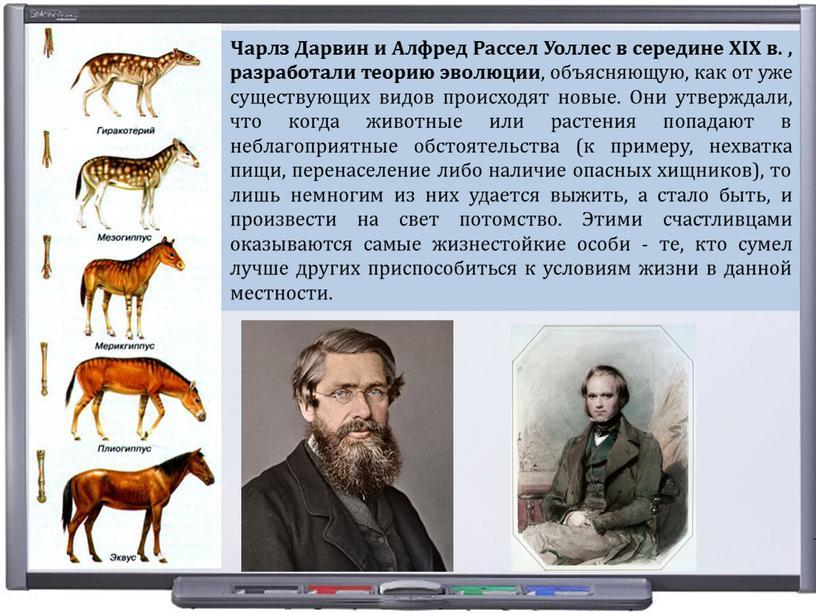 Чарлз Дарвин и Алфред Рассел Уоллес в середине
