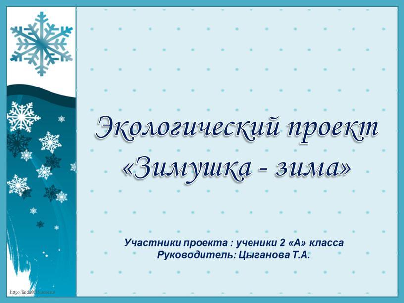 Экологический проект «Зимушка - зима»