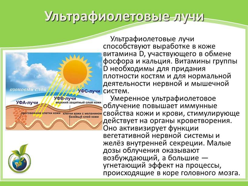 Ультрафиолетовые лучи Ультрафиолетовые лучи способствуют выработке в коже витамина