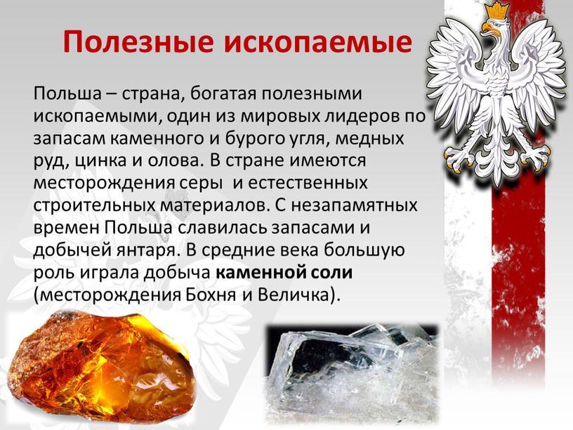 Полезные ископаемые Польша – страна, богатая полезными ископаемыми, один из мировых лидеров по запасам каменного и бурого угля, медных руд, цинка и олова
