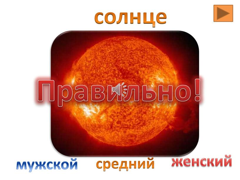 солнце мужской средний женский Правильно!