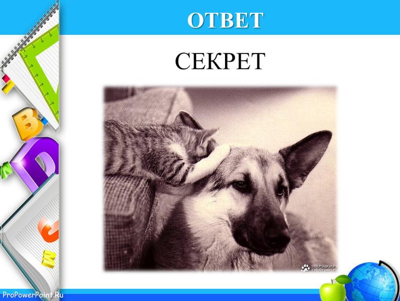 ОТВЕТ СЕКРЕТ