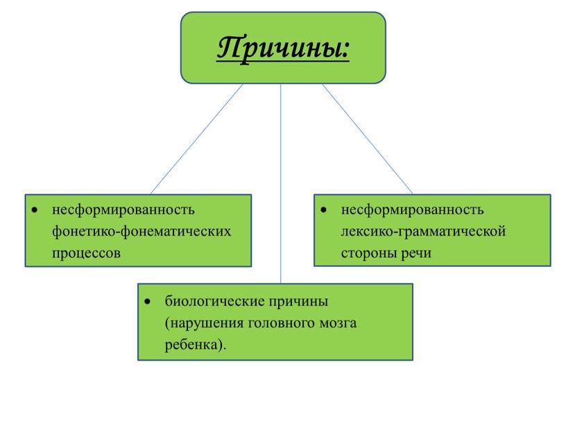 несформированность фонетико-фонематических процессов несформированность лексико-грамматической стороны речи биологические причины (нарушения головного мозга ребенка). Причины: