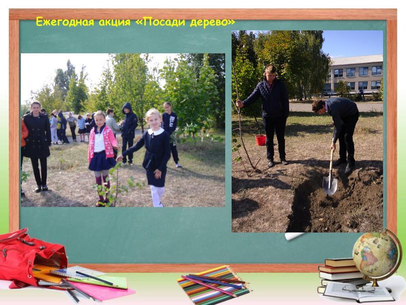 Ежегодная акция «Посади дерево»