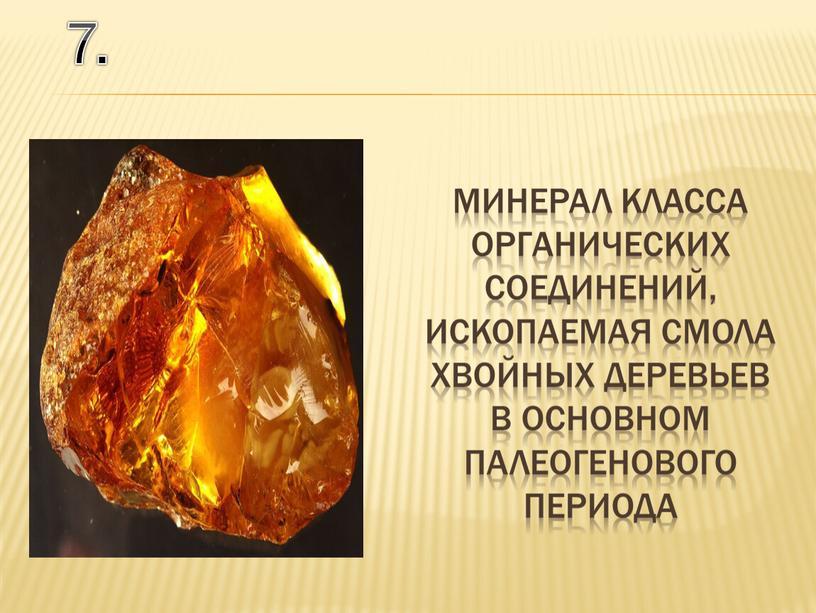7. минерал класса органических соединений, ископаемая смола хвойных деревьев в основном палеогенового периода
