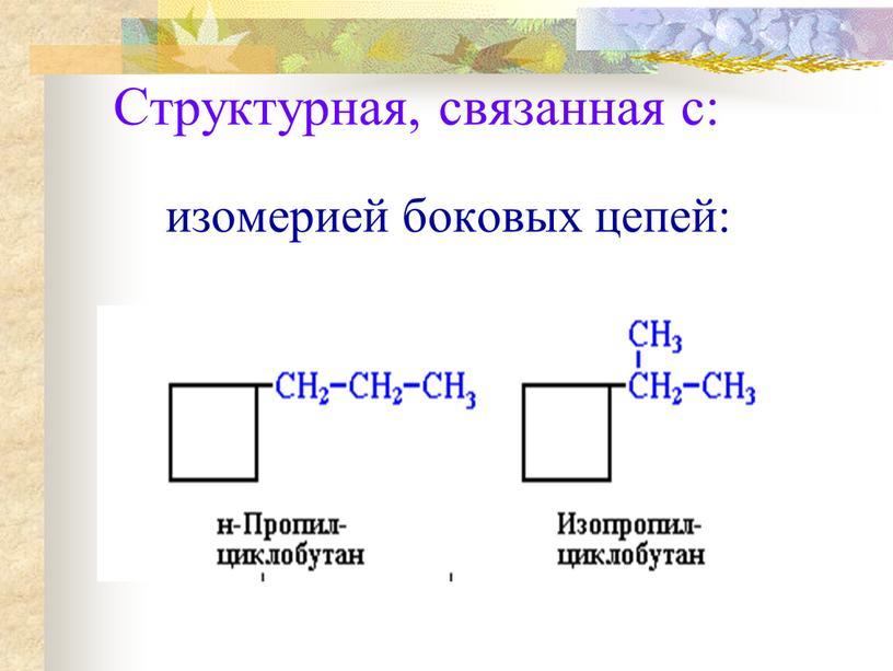 Структурная, связанная с: изомерией боковых цепей: