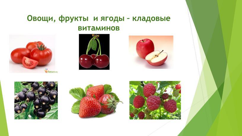 Овощи, фрукты и ягоды – кладовые витаминов