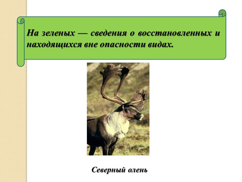 На зеленых — сведения о восстановленных и находящихся вне опасности видах