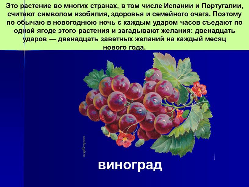 Это растение во многих странах, в том числе