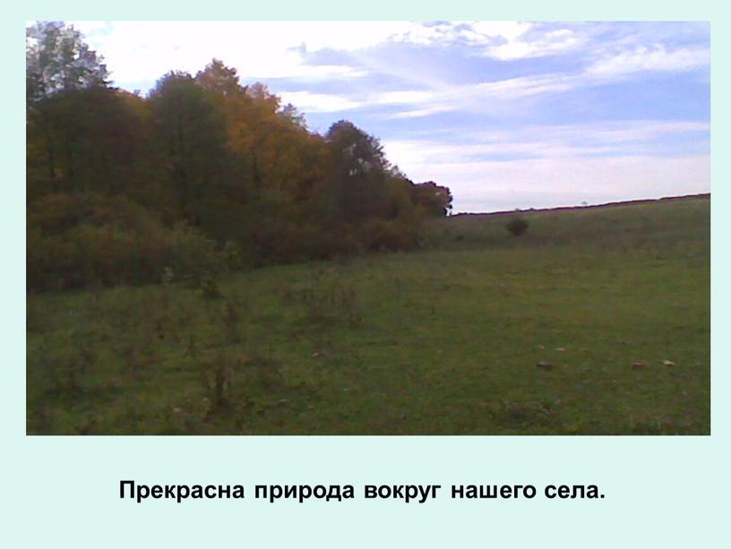 Прекрасна природа вокруг нашего села