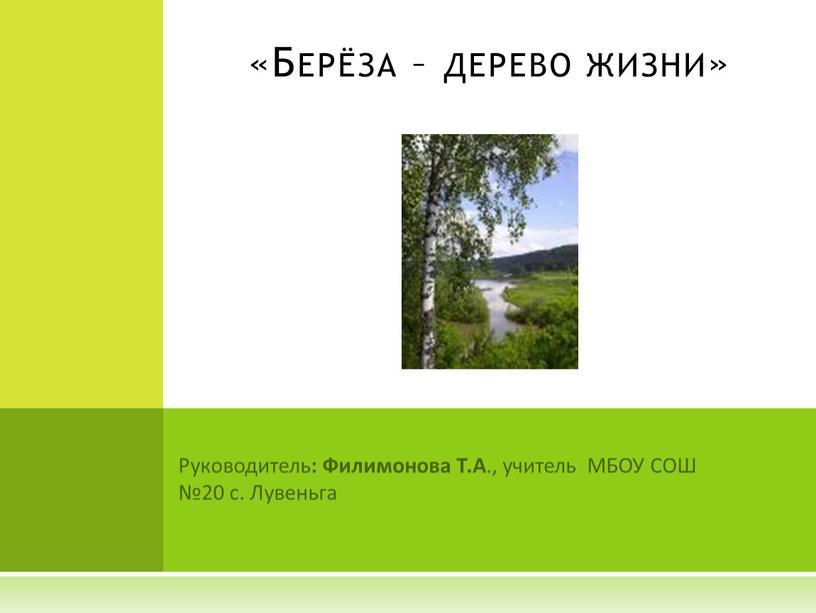 Руководитель : Филимонова Т.А