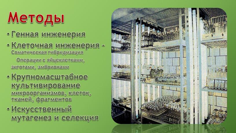 Методы Генная инженерия Клеточная инженерия -Соматическая гибридизация