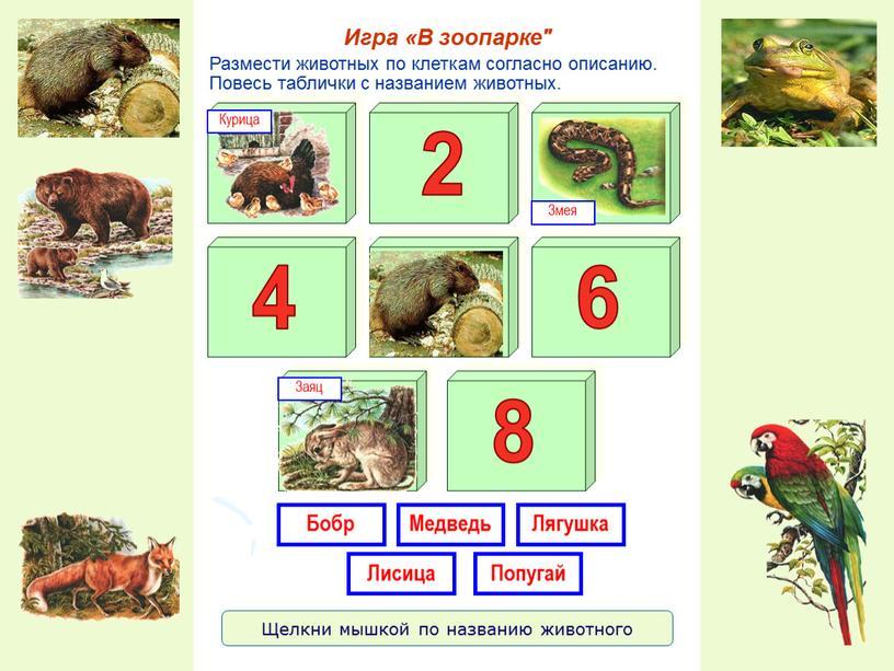 Размести животных по клеткам согласно описанию