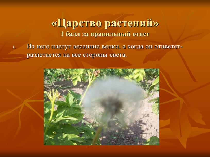 Царство растений» 1 балл за правильный ответ