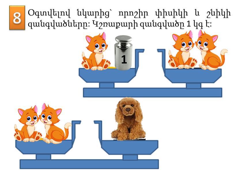 8 Օգտվելով նկարից` որոշիր փիսիկի և շնիկի զանգվածները: Կշռաքարի զանգվածը 1 կգ է: 1