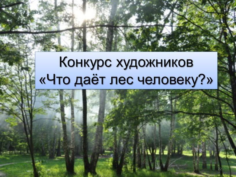 Конкурс художников «Что даёт лес человеку?» 22