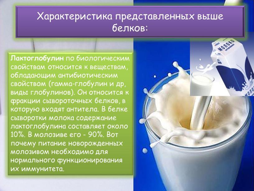 Лактоглобулин по биологическим свойствам относится к веществам, обладающим антибиотическим свойством (гамма-глобулин и др, виды глобулинов)