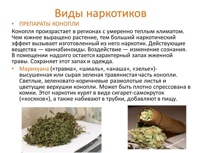 Виды наркотиков ПРЕПАРАТЫ КОНОПЛИ