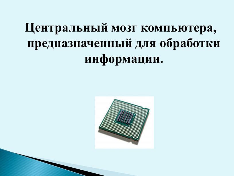 Центральный мозг компьютера, предназначенный для обработки информации