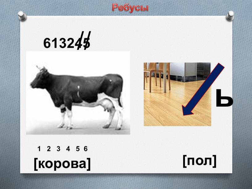 613245 // ь 1 2 3 4 5 6 [корова] [пол] Ребусы