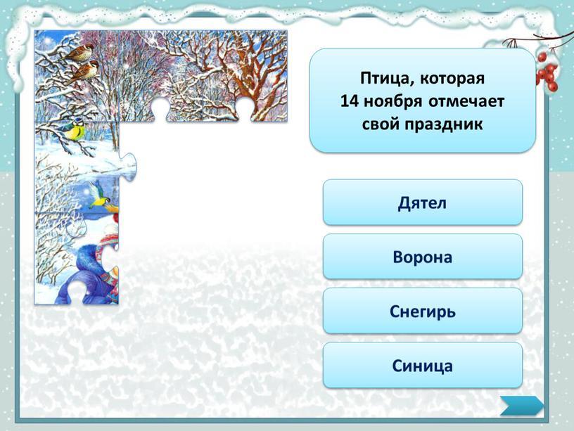 Птица, которая 14 ноября отмечает свой праздник