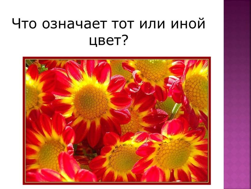Что означает тот или иной цвет?