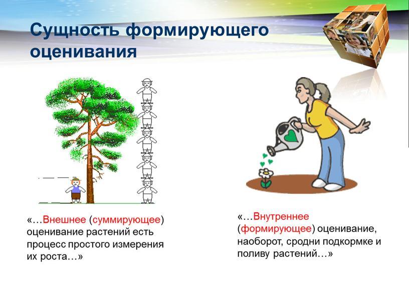 Сущность формирующего оценивания «…Внешнее (суммирующее) оценивание растений есть процесс простого измерения их роста…» «…Внутреннее (формирующее) оценивание, наоборот, сродни подкормке и поливу растений…»