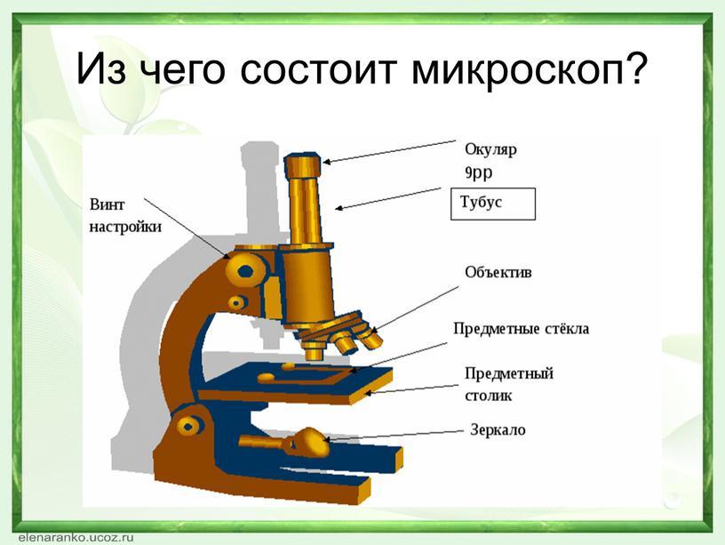 Из чего состоит микроскоп?