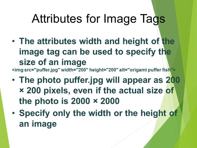 Attributes for Image Tags The attributes width and height of the image tag can be used to specify the size of an image