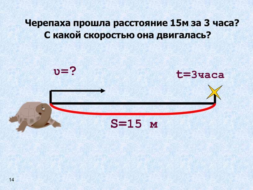 Черепаха прошла расстояние 15м за 3 часа?