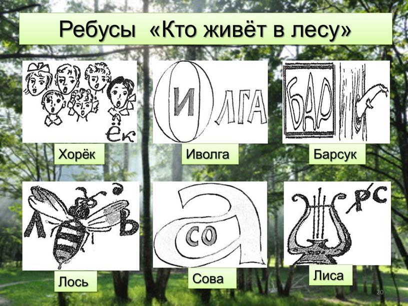 Ребусы «Кто живёт в лесу» Хорёк