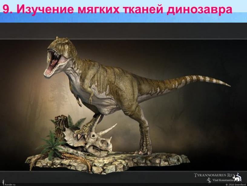 Изучение мягких тканей динозавра