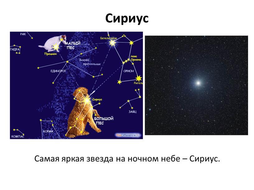 Сириус Самая яркая звезда на ночном небе –