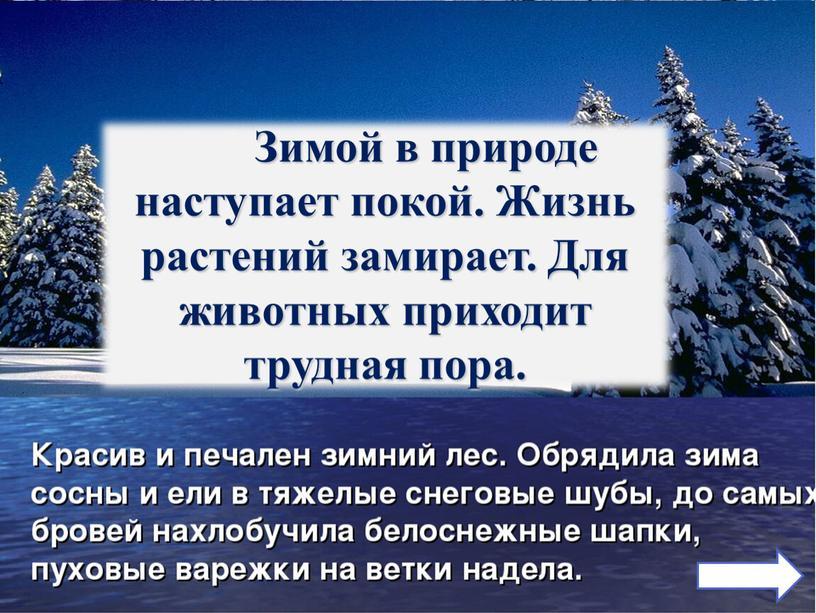 Февраль - «снежень». В феврале два друга – мороз да вьюга
