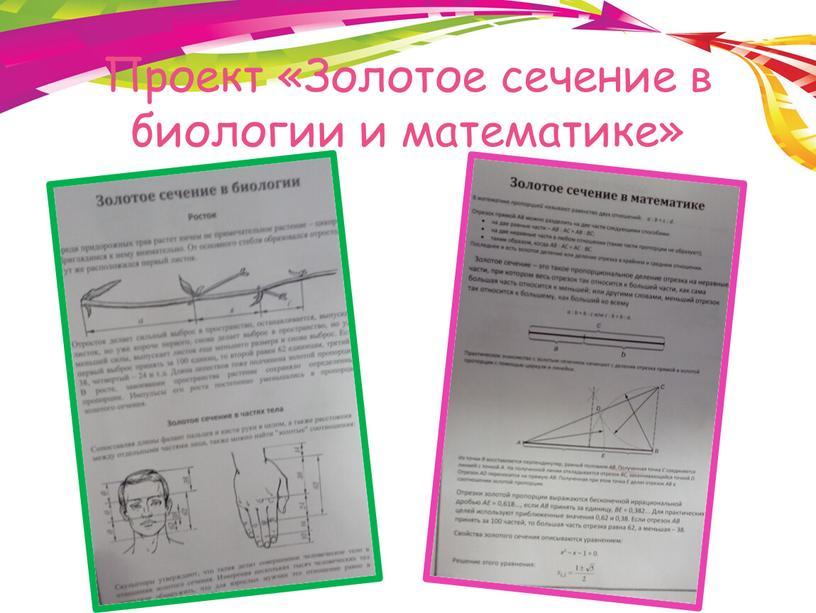Проект «Золотое сечение в биологии и математике»