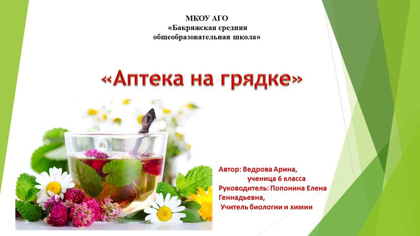 Аптека на грядке» МКОУ АГО «Бакряжская средняя общеобразовательная школа»