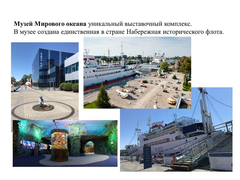 Музей Мирового океана уникальный выставочный комплекс