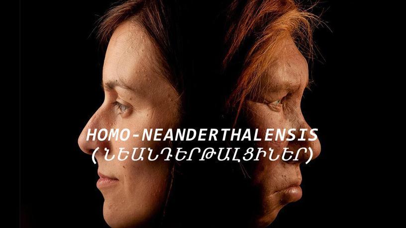 Title Layout Homo-neanderthalensis (ՆեանդԵրթալցիներ)