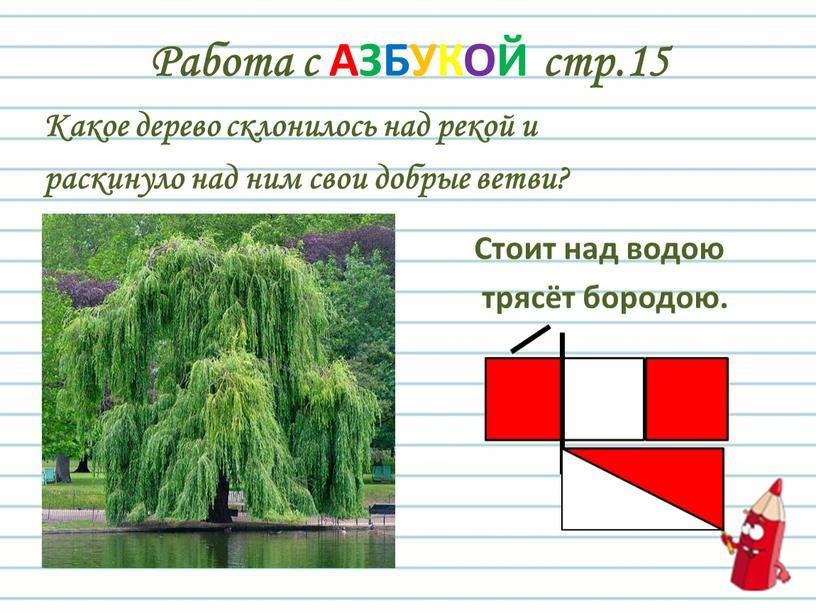 Работа с АЗБУКОЙ стр.15 Какое дерево склонилось над рекой и раскинуло над ним свои добрые ветви?
