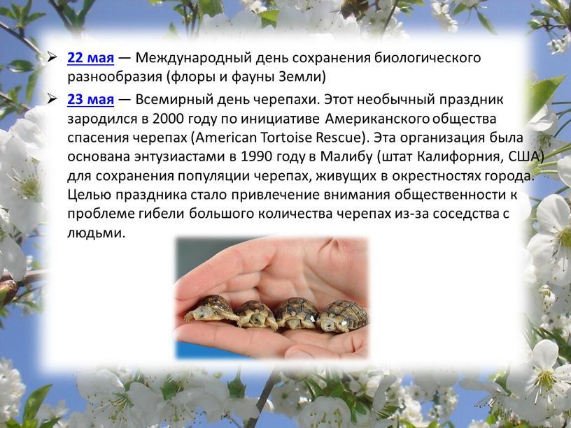 Международный день сохранения биологического разнообразия (флоры и фауны