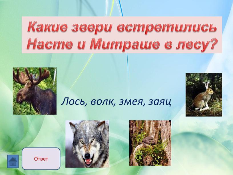Лось, волк, змея, заяц Какие звери встретились