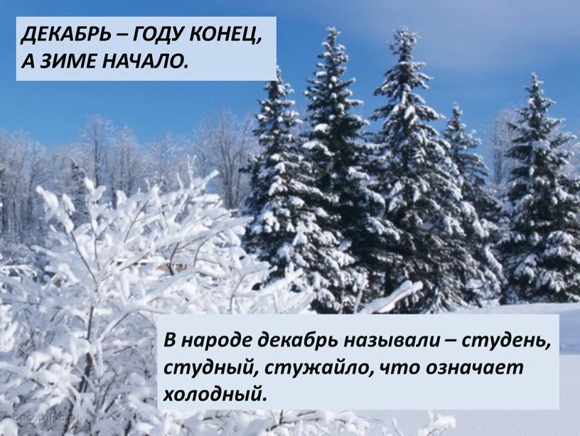 Декабрь – году конец, а зиме начало