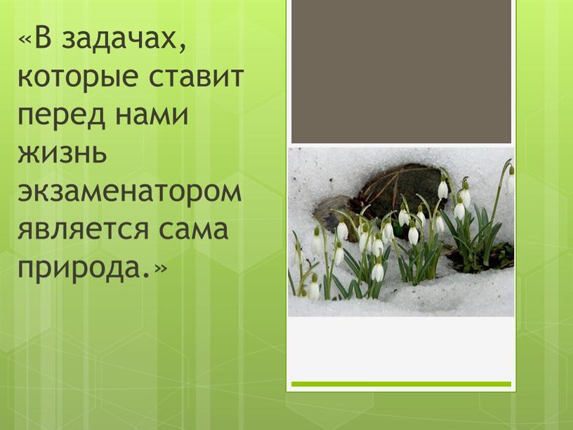 В задачах, которые ставит перед нами жизнь экзаменатором является сама природа
