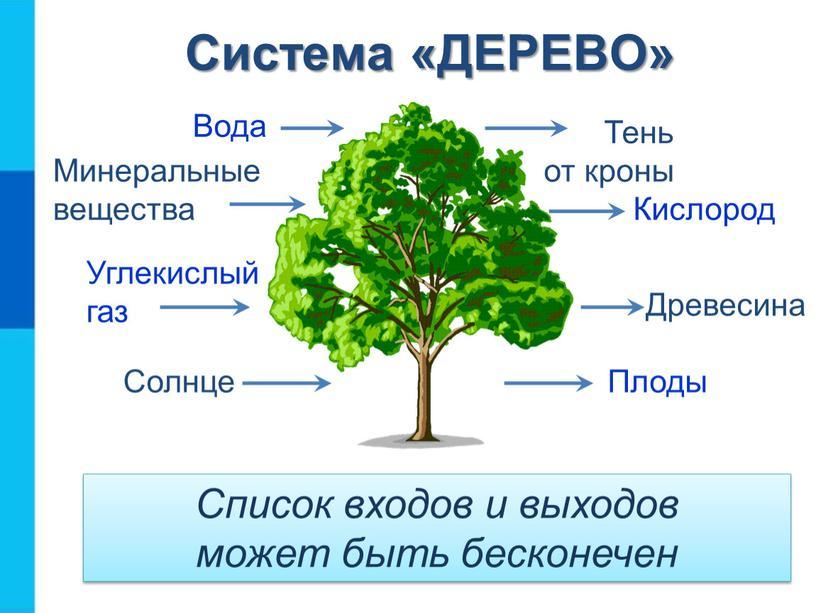 Система «ДЕРЕВО» Список входов и выходов может быть бесконечен
